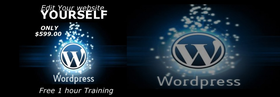 Psychic WordPress Custom Site